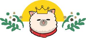 子犬におすすめのドッグフード ランキング