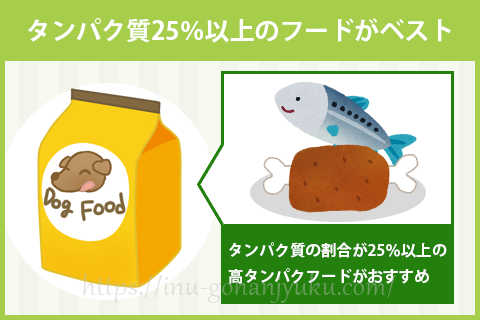タンパク質は25%以上!肉や魚に含まれる質の高いタンパク質がベスト!