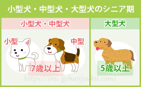 小型犬・中型犬・大型犬のシニア期