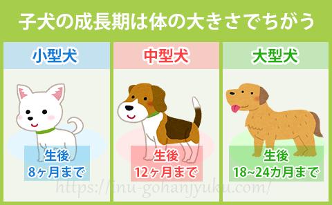 子犬の成長期間は、ワンちゃんの体の大きさで変わる