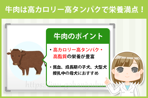 牛肉は高タンパク高カロリー!鉄分や亜鉛も多く貧血予防にも効果的