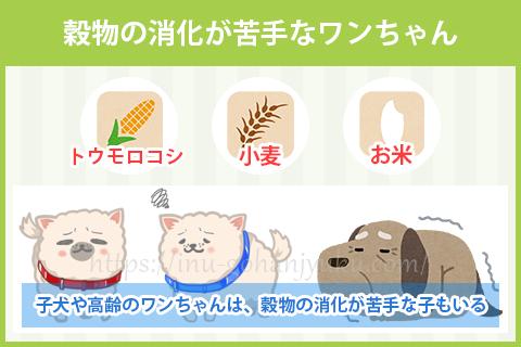 このことから穀物不使用のドッグフードは、穀物を一切使用しない代わりに肉や魚をたっぷり使って作られているため、愛犬に必要な栄養をしっかり補えると人気を集めているのです。
