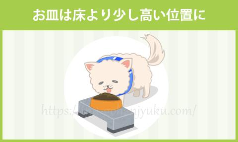 お皿は床より少し高い位置のほうが食べやすい