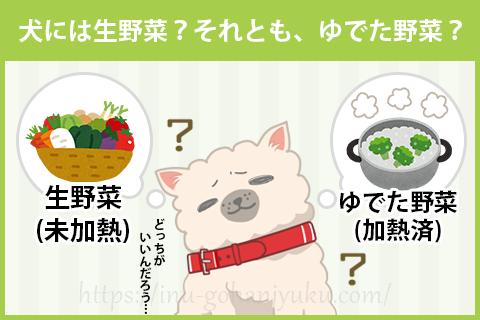 犬には「生野菜」と「ゆでた野菜」のどっちが良い?