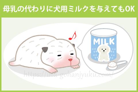 一方、母乳の分泌が少なかったり、出産した子犬の数が多くて十分な量を飲めない子犬がいる場合などは、母乳の代わりに犬用のミルクを与えます。