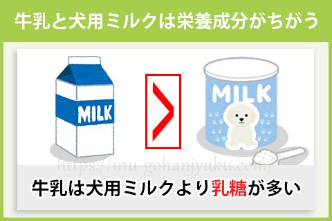 子犬に人用の牛乳を与えてはダメ!