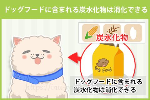 犬は炭水化物を消化できないは、嘘?