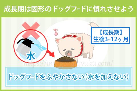 【成長期:生後3~12ヶ月】離乳食から固形フードへ
