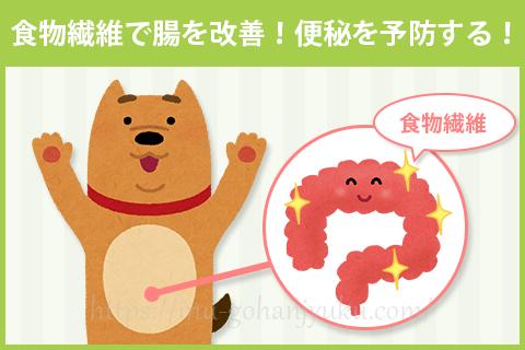 シニア犬に多い便秘は、食物繊維で予防する