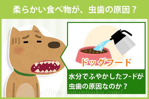 柔らかいフードは、犬の体に悪いの?