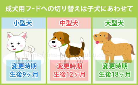 子犬用から成犬用のドッグフードに変える時期は?