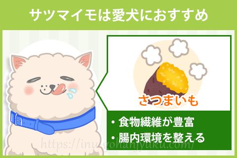 サツマイモは便秘も予防できて愛犬におすすめ