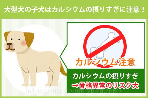 大型犬の子犬はカルシウムを摂りすぎると危険!