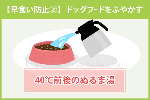 【早食い防止②】ドッグフードをふやかす