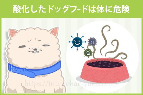 おすすめは陶器のお皿。ある程度の重さがあるので、お皿のフードが残り少なくなったときに愛犬が舌で押しても動きにくいです。