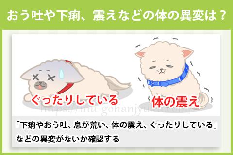 ドッグフードを食べず、愛犬に元気がない場合はどうする?