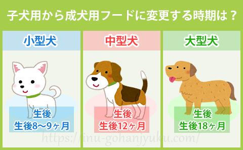 それは小型犬・中型犬・大型犬で、それぞれちがいます。