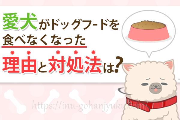 愛犬がドッグフードを食べない!愛犬の様子から考えられる理由と対処法は?