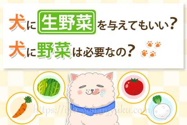 犬も野菜を食べたほうが良い?生野菜よりゆでた野菜がおすすめな理由は?
