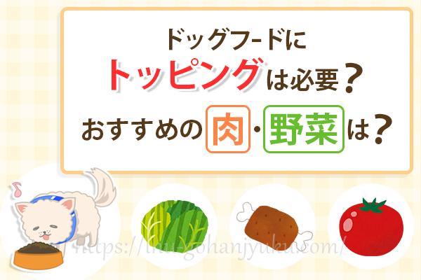 ドッグフードにトッピングは必要ない?おすすめの野菜や肉、注意点は?