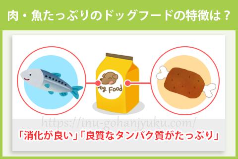 肉・魚が50%以上の多いドッグフードの特徴は?