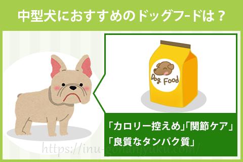 中型犬(フレンチブルドッグ・コーギーなど)におすすめのドッグフードは?
