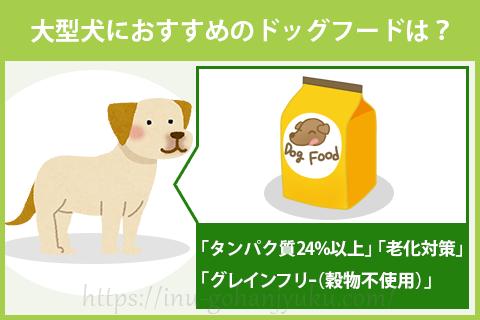 大型犬におすすめのドッグフードのポイントは?
