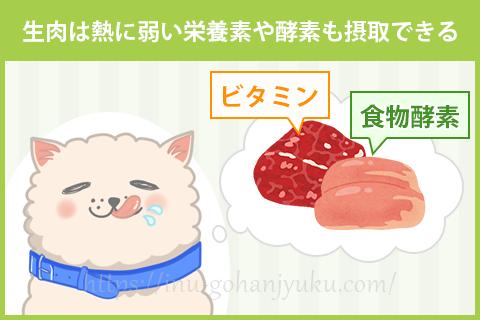 犬に生肉を与えるメリット