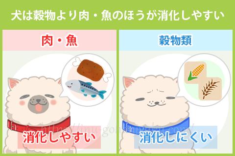 【ポイント①】肉・魚の多いドッグフードは消化しやすい