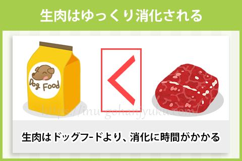 生肉はドッグフードより、ゆっくり吸収される