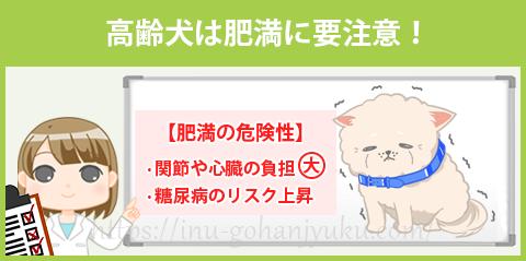 【選び方②】高齢犬は肥満に注意!脂質控えめが安心