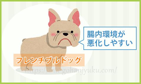 中型犬のなかでも、フレンチブルドッグは腸内の食べ物が発酵しやすく、腸内環境が悪化しやすい傾向があります。