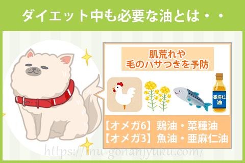 【ポイント②】オメガ3・オメガ6はダイエット中も必要!