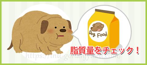 のため食事量の見直しが必要ですが、それと同時にドッグフードに含まれる脂質量にも注意してあげましょう。
