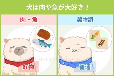 【ポイント②】犬は肉や魚を本能的に求めている!