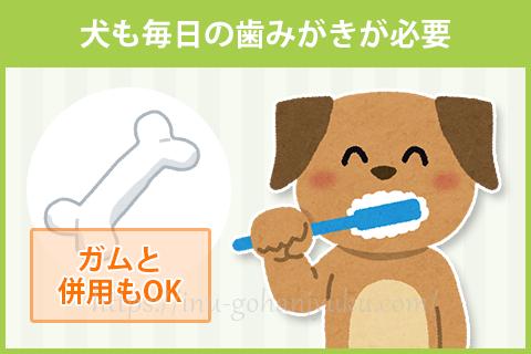 ガムを与えていたら歯みがきは要らない?