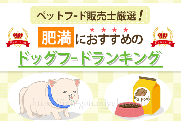 【ペットフード販売士厳選】肥満犬のダイエット・体重管理におすすめのドッグフードランキング