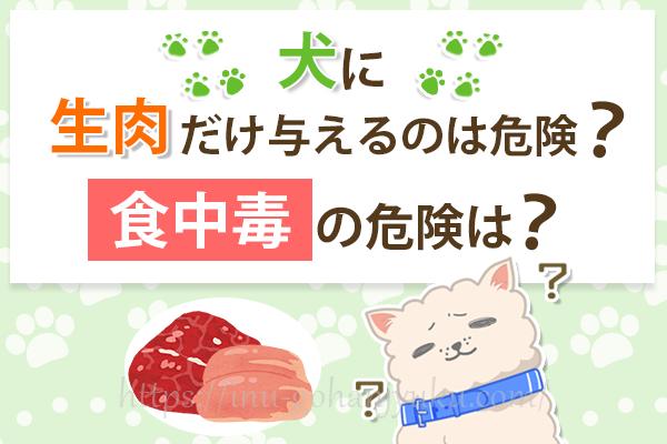 犬に生肉だけ与えるのは危険!?下痢にならない生肉の与え方・量は?