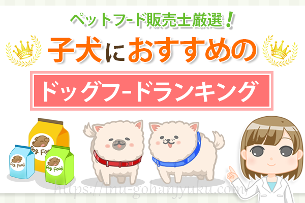 【ペットフード販売士厳選】成長期の子犬におすすめ!栄養満点なドッグフードランキング
