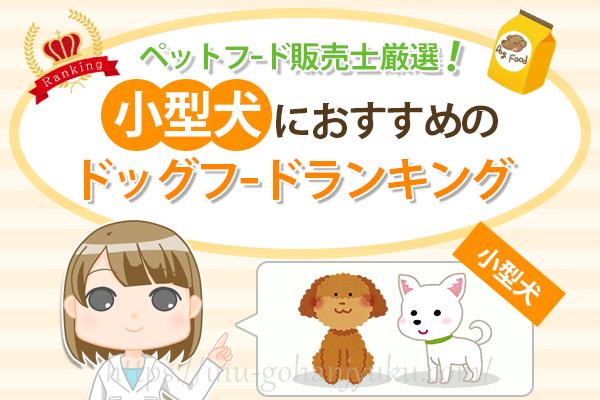 【ペットフード販売士厳選】小型犬(チワワ・トイプードル)におすすめ!ドッグフードランキング