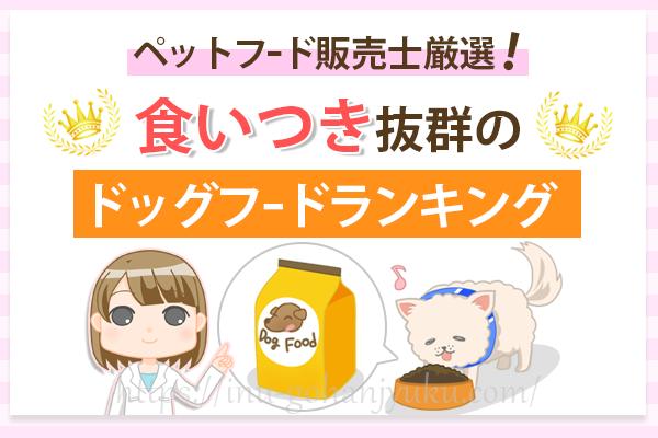 【ペットフード販売士厳選】食いつき抜群!愛犬が飽きない!おすすめのドッグフードランキング