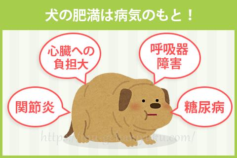 犬の肥満は病気のもと!