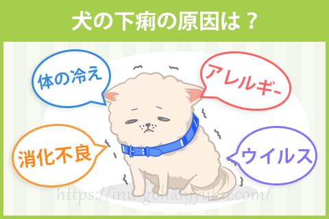 犬の下痢の原因は?