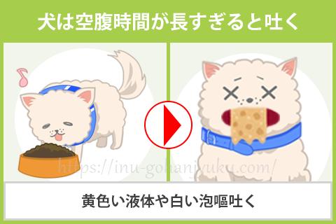 【原因①】犬は空腹時間が長すぎると吐く