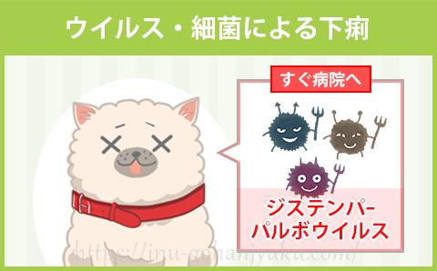 【危険性:高レベル】ウイルス・細菌による下痢