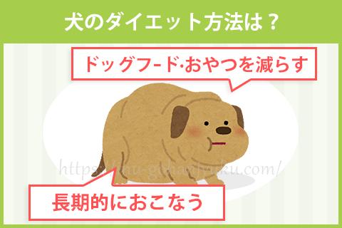犬のダイエット方法・注意点は?