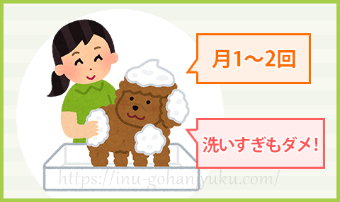月1~2回、犬用シャンプーで洗う