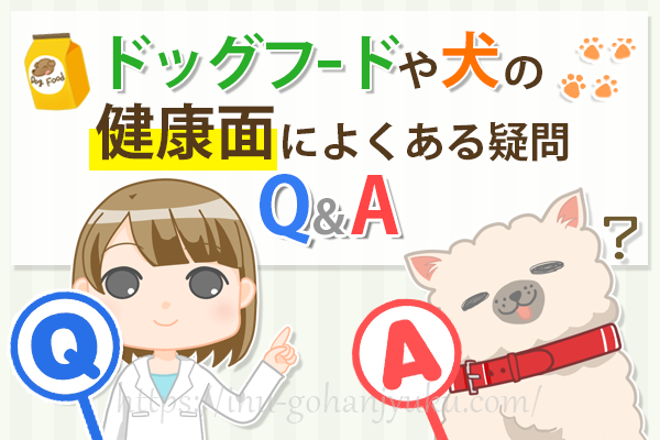 ドッグフードに関する不安や悩みをズバリ解決!よくある疑問Q&A