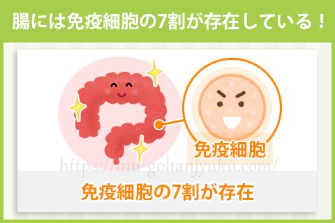 【ポイント①】消化の良い食事