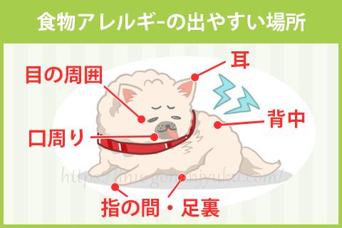 犬の食物アレルギーは文字強調目や口のまわり、耳、手足の指の間、肉球、背中などに症状が出やすいです。